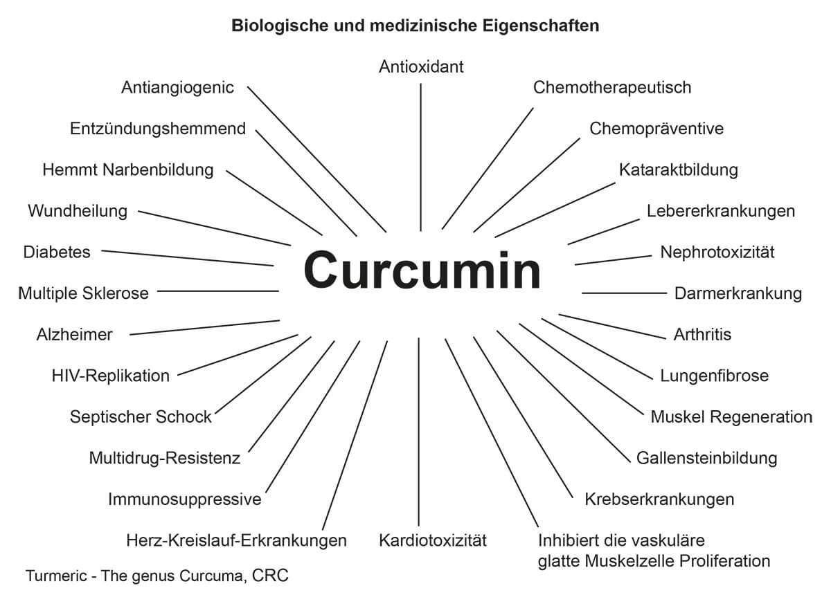 Curcuma-diagram